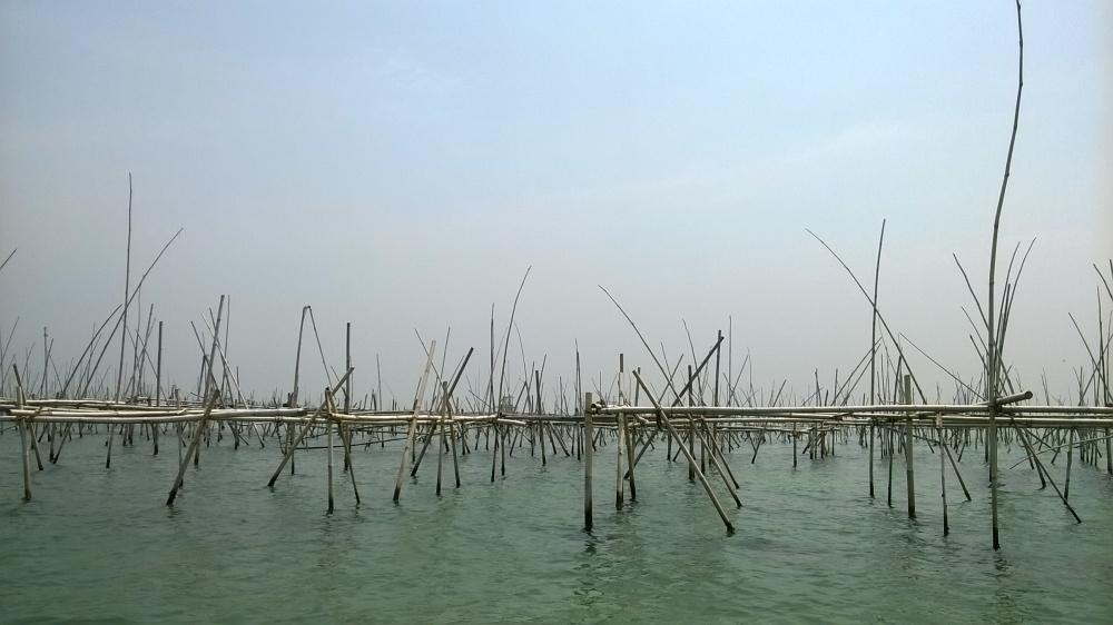 Jelajah Pulau Kelor Bersama Nol Derajat Indonesia (3/6)